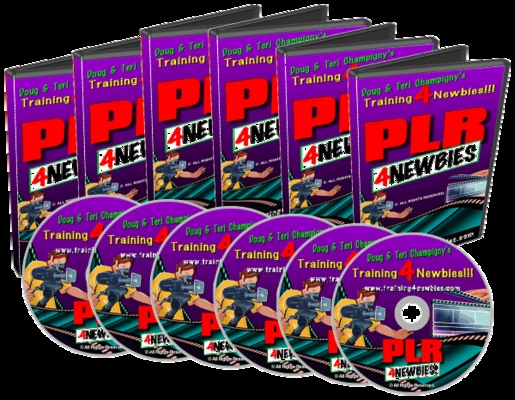 Product picture PLR For Newbies Video - The Way To Make Money Online