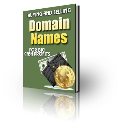 Product picture Domain Profits - Buy and Sell